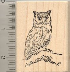 Great Horned Owl Rubber Stamp RubberHedgehog,http://www.amazon.com/dp/B003U79G1O/ref=cm_sw_r_pi_dp_Dl4Atb1XJ3CDK646