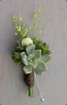 Succulent boutonniere for groom. Coordinate with bride's bouquet. Succulent Boutonniere, Succulent Bouquet, Boutonnieres, Groomsmen Boutonniere, Floral Wedding, Wedding Bouquets, Rustic Wedding, Prom Flowers, Dream Wedding