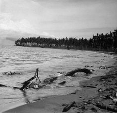 """Japanese dead in the surf, Buna, New Guinea Campaign, WWII. The photo ran with the headline: """"This is 'Maggot Beach.'"""""""