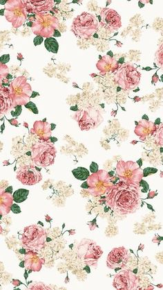 Roses iPhone 5 Wallpaper Mais