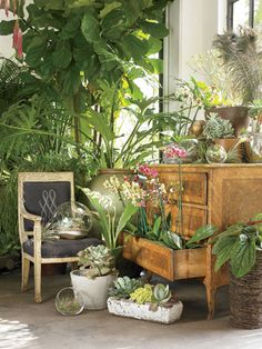 A look at Atlanta's GARDEN shop that is defining the art of indoor gardening- (photo: Emily Followill)