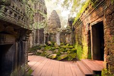 Temple Ta Prohm, Angkor, Cambodge.