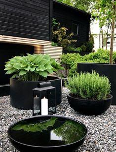 Black Garden, Lush Green, Garden Projects, Pallet Projects, Garden Inspiration, Backyard Landscaping, Outdoor Gardens, Outdoor Planters, Modern Gardens