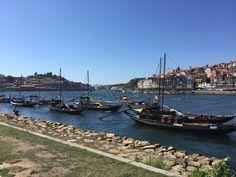 Flusssegler für Portweintransport