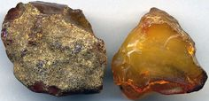 Raw Baltic amber or resinite – the 'coating' on the left piece of amber is caused by seawater Minerals And Gemstones, Rocks And Minerals, Amber Crystal, Crystal Healing, Baltic Amber, Baltic Sea, Coral, Dinosaur Bones, Amber Stone