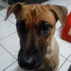 Omeng's cute face