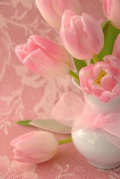 Pink tulips and lace