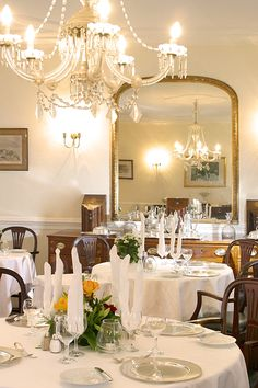 The Boutique Hotel Quinta da bela Vista on Madeira Island is an ideal place for travellers who appreciate the traditional and seek peace and quiet. Funchal, Photo Boards, Exotic Plants, Antique Furniture, Portugal, Restoration, Table Settings, Chandelier, Restaurant