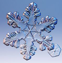 Snowflake captured by Kenneth G. Libbrecht using a specially designed snowflake photomicroscope.