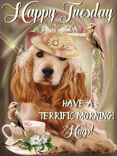 Hugs For A Terrific Morning morning good morning quotes happy tuesday tuesday images good morning tuesday tuesday picture quotes Tuesday Quotes Good Morning, Cute Good Morning Quotes, Good Afternoon Quotes, Good Morning Greetings, Morning Prayers, Good Morning Good Night, Day For Night, Morning Morning, Weekend Quotes