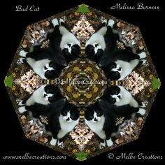 Bad Cat - this mandala design was created from a friend's cat named Hooka.  Hooka was a leader of a cat mob known for their bad behavior!