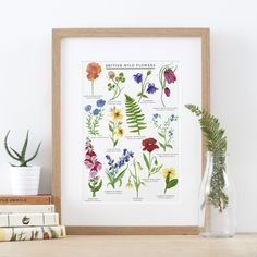 British Wild Flowers Illustrated Giclée Print by Little Paisley Designs, the perfect gift for Explore more unique gifts in our curated marketplace. Watercolor Artwork, Watercolor Illustration, Watercolour, British Wild Flowers, Kids Prints, Art Prints, Nature Prints, Paisley Design, Botanical Prints