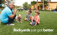 Looking For An Eco-Friendly, Maintenance-Free, Gorgeous Alternative To Grass?