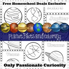 Free Homeschool Deals Pack
