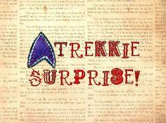 Small Trekkie Surprise Package Star Trek Inspired by bohobear, $25.00
