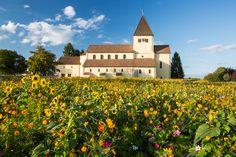 UNESCO Welterbe Klosterinsel Reichenau
