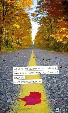 """Choose allowance and life will always be a magical adventure! Diana xx Photo """"middle of the road""""  Sault Ste. Marie, Ontario. Steffon McGregor."""