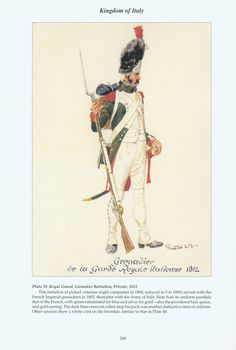 Kingdom of Italy, Royal Guard, Grenadier Battalion, Private, 1812 Empire, Naples, Kingdom Of Italy, Italian Army, National History, Royal Guard, French Army, Napoleonic Wars, Military History