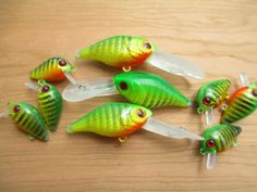 Tackle Box, Soft Plastic, Fishing Lures, Pets, Animals, Fishing Jig, Animales, Animaux, Animal