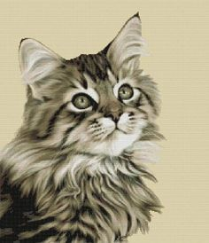 5d273465f2ad23743d2fcde92cf3cebf--maine-coon-cats-cat-gif.jpg (236×274)