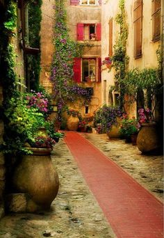 Beautiful alley, Provence, France