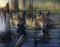 Wolf Print Shallow Backwaters by artist Kevin Daniel...Beautiful!!