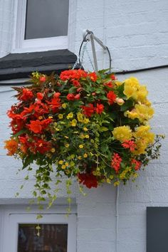 Using Hanging Flower Basket Ideas is a very good option if you want to make your home more appealing. #hangingflower #flowerbasket #flowers #floweridas