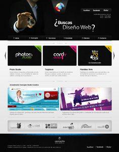 Web concepto 2011