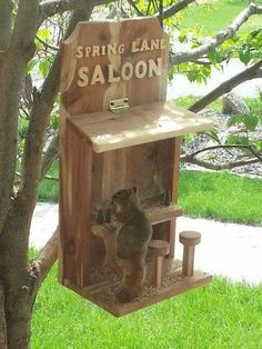 "Squirrel at the saloon.   (""Spring Lane Saloon."")"