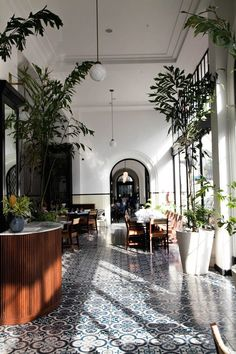 Gorgeous light-filled hallway with graphic floor tiles and floor-to-ceiling indoor plants.