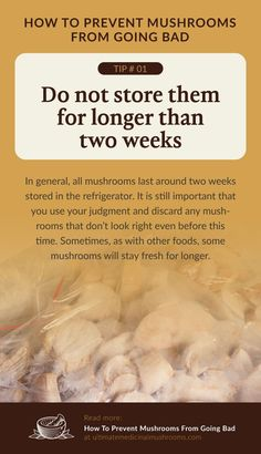 It takes two weeks until most edible mushrooms go bad. Always consume your mushrooms shortly after you have bought, harvested or foraged them. If you plan on stocking up on them, the best way to keep them from rotting is to learn how to preserve mushrooms. | Discover more about medicinal mushrooms at ultimatemedicinalmushrooms.com