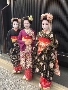 Maiko sisters of Umeno: Maiko Umehina, Maiko Umechie and recently debuted Maiko Umekana (SOURCE) Geisha Hair, Middle Eastern Fashion, Wonders Of The World, Harajuku, Sari, Asian, Japanese, Female, Stylish