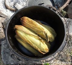 Corn on the cob in the dutch oven. One of the best dishes for those new to dutch ovens to begin. (And it never gets old.)