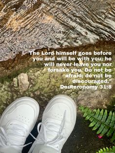 Modern Miracles, Good Scriptures, Deuteronomy 31 8, Story Of David, Bible Plan, In His Presence, Whole Earth, Never Leave You, Do Not Be Afraid