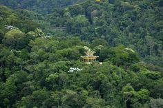 Vista Chinesa na Floresta da Tijuca, Rio