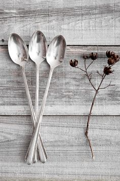New Kitchen Utensils Vintage Silver Spoons Ideas Silver Cutlery, Silver Spoons, Silver Plate, Sugar Spoon, Still Life Photography, Iced Tea, Vintage Kitchen, Vintage Silver, Brown And Grey