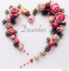 The final month of 2019 is here let's make it a lovely one.not with presents t. - Happy Christmas - Noel 2020 ideas-Happy New Year-Christmas Hello December Tumblr, Hello December Pictures, Hello November, January, December Wallpaper Iphone, Cute Wallpaper For Phone, Hello Kitty Wallpaper, Welcome December, Month Flowers