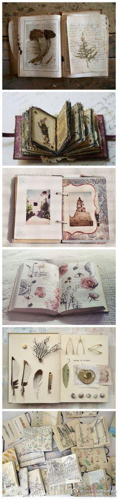 喜欢美丽的标本,喜欢有故事的明信片,喜欢各种风格的笔记本,喜欢一切的美好,把它们都收集起来,偶尔回头看看,心里总会充满大大的满足感。 - 堆糖 发现生活_收集美好_分享图片