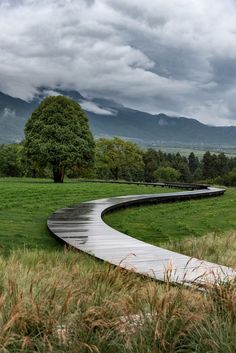A meandering wooden path leads towards a centuries-old oak tree situated at the centre of this alpine garden in China's Yulong County, which landscape design studio Z'scape created to celebrate the region's native plants and indigenous culture.