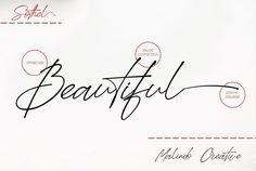 Sothel Font Duo: Serif and Script Best Script Fonts, Good Luck To You, Font Setting, Don't Give Up, Serif, Cursive, Website Template, Lorem Ipsum, Flyer Design