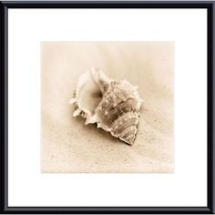 Alan Blaustein 'Il Oceano No. 3' Framed Art Print ( / Mat)
