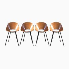 Medea Stühle von Vittorio Nobili für Fratelli Tagliabue, 1960er, 4er S... Jetzt bestellen unter: https://moebel.ladendirekt.de/kueche-und-esszimmer/stuehle-und-hocker/esszimmerstuehle/?uid=460c52b3-eddf-5568-929b-62839fd43183&utm_source=pinterest&utm_medium=pin&utm_campaign=boards #kueche #sets #esszimmerstuehle #esszimmer #hocker #stuehle Bild Quelle: pamono.com