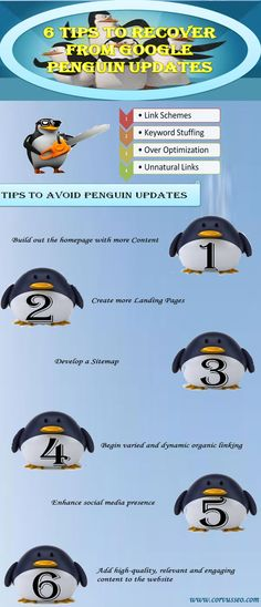 Here in this info-graphics SEO company in Houston provides you an idea to recover from penguin Updates.