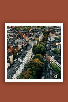 Tambur Gallery | Katarina Bangata 100x100cm | TAMBURSTORE.SE Medusa, Stockholm, Branches, Magnolia, City Photo, Studio, Gallery, Wall, Prints