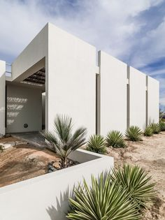 Zacatitos 03 by Campos Leckie Studio / Los Zacatitos, in Baja California Sur, Mexico