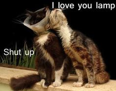 I love you lamp!