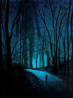 Had this feeling walking to the glass suite up @ R & L's river retreat. A pitchy indigo sky splattered with twinkling starlight.  Otherworldly and a teeny bit scary :)  (Fear of Forests at Night - Art by Daniel)