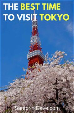 Best Time of the Year to Visit Tokyo – The 2016 Guide