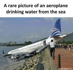 An airplane drinking water! Memes Humor, Funny Memes, Funny Quotes, Hilarious, Funny Accidents, An Aeroplane, Aviation Humor, Weird Cars, Airline Tickets