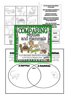 Animal classification activities for elementary science lessons.